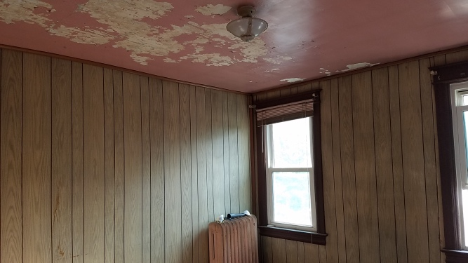 Before: wood paneling and scary pink ceiling